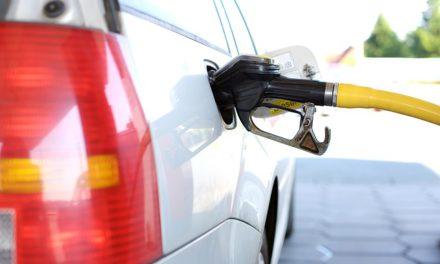 Biocombustibles: situacIón y propuesta del iae mosconi