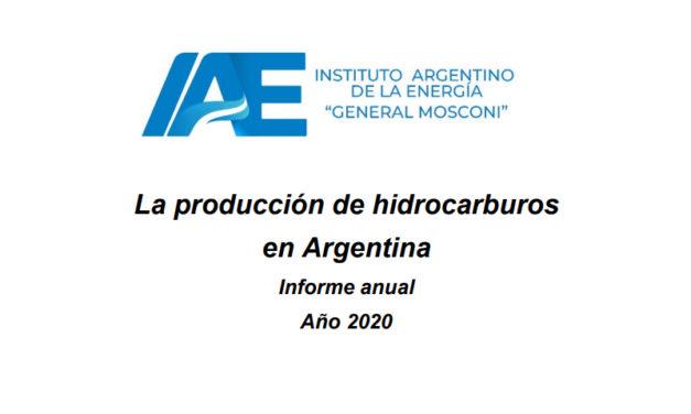 Informe anual de hidrocarburos| Año 2020