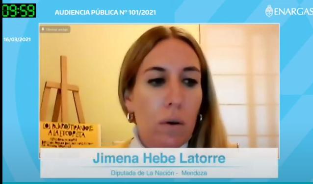Exposición de Jimena Latorre en la Audiencia Pública del Gas